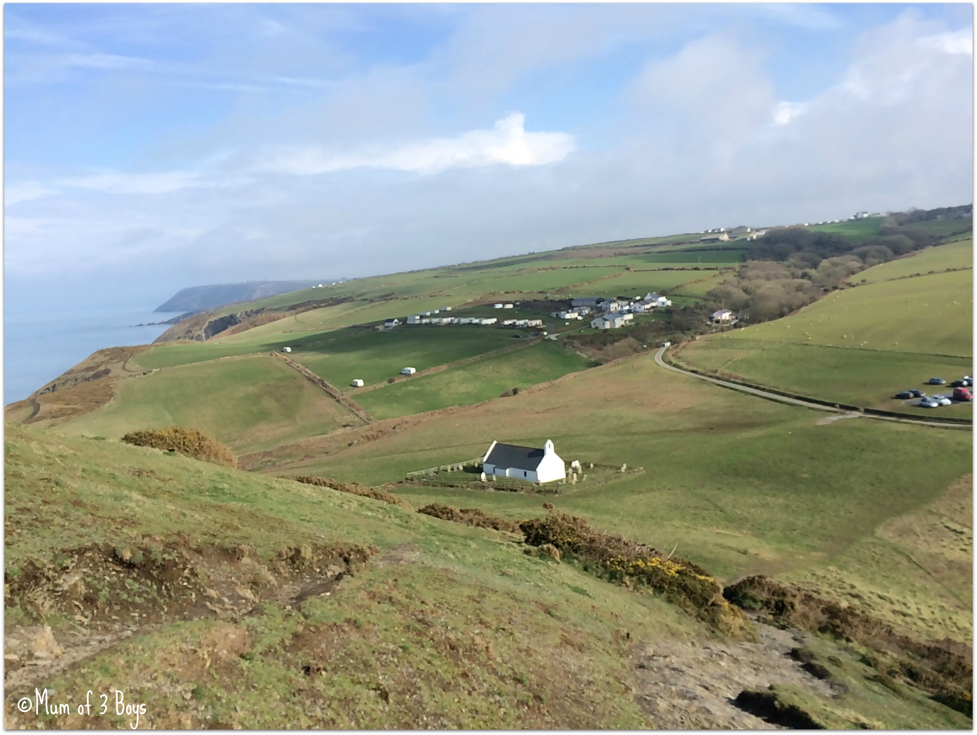 mwnt view